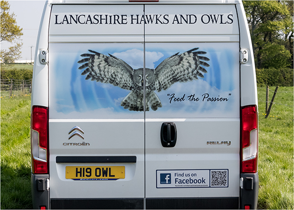 Lancashire Hawks And Owls
