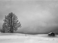 On A Winters Day By Gordon Watson